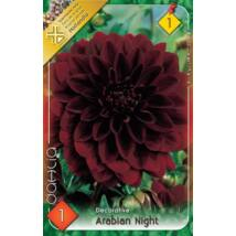 VIRÁGHAGYMA DÁLIA Dahlia Arabien Night  1db/cs
