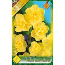 VIRÁGHAGYMA NÁRCISZ Narcisuss Yellow Cheerfuiness 5db/cs 12/14