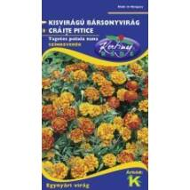 DÍSZNÖVÉNY BÁRSONYVIRÁG RÉDEI KERTIMAG kisvirágú színkeverék