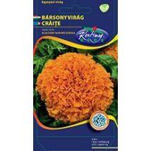 DÍSZNÖVÉNY BÁRSONYVIRÁG RÉDEI KERTIMAG nagyvirágú, alacsony, narancssárga