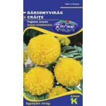 DÍSZNÖVÉNY BÁRSONYVIRÁG RÉDEI KERTIMAG nagyvirágú, magas, citromsárga