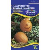 DÍSZNÖVÉNY DÍSZTÖK RÉDEI KERTIMAG Ghostrider, Halloween tök