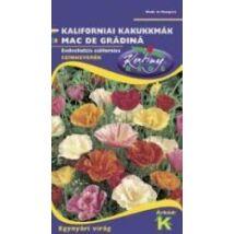DÍSZNÖVÉNY KALIFORNIAI MÁK RÉDEI KERTIMAG Egyszerű virágú, színkeverék