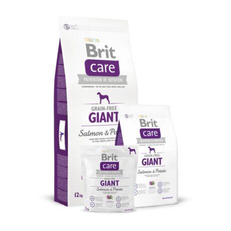BRIT CARE KUTYATÁP GRAIN FREE GIANT (salmon&potato)(igen nagy testű, felnőtt) 12kg