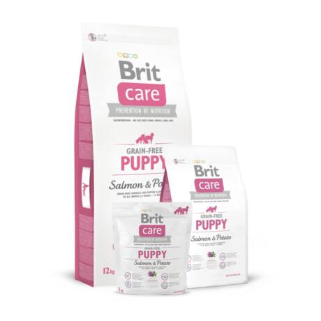 BRIT CARE KUTYATÁP GRAIN FREE PUPPY (salmon&potato) 1kg