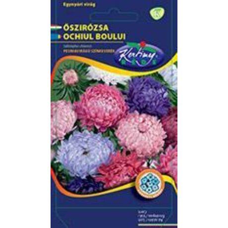DÍSZNŐVÉNY ŐSZIRÓZSA RÉDEI KERTIMAG Paeonia virágú színkeverék