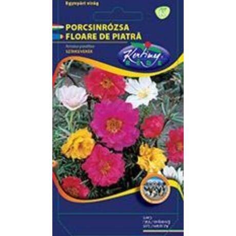 DÍSZNÖVÉNY PORCSINRÓZSA RÉDEI KERTIMAG Féltelt virágú színkeverék